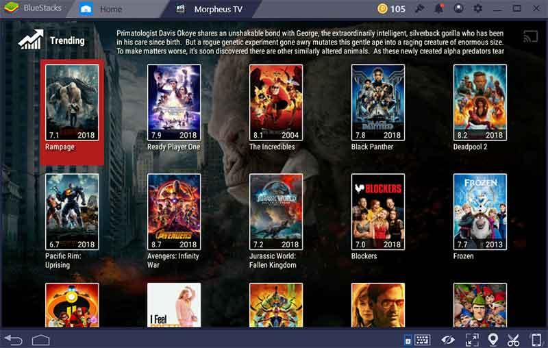 movies-list-morpheus-tv
